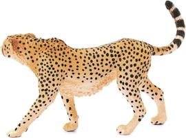 Jachtluipaard vrouwtje - Schleich 14746