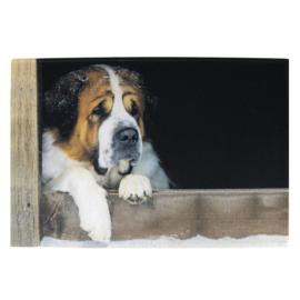 Deurmat Sint Bernard hond