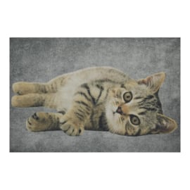 Deurmat grijze kat