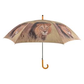 paraplu zebra