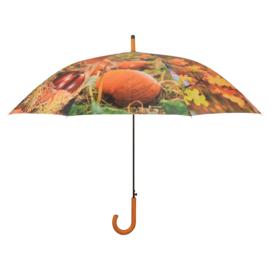 paraplu herfst