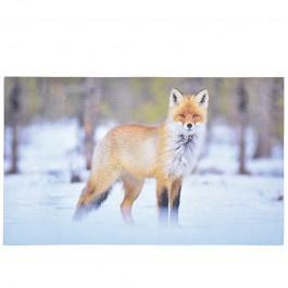 deurmat vos in  sneeuw