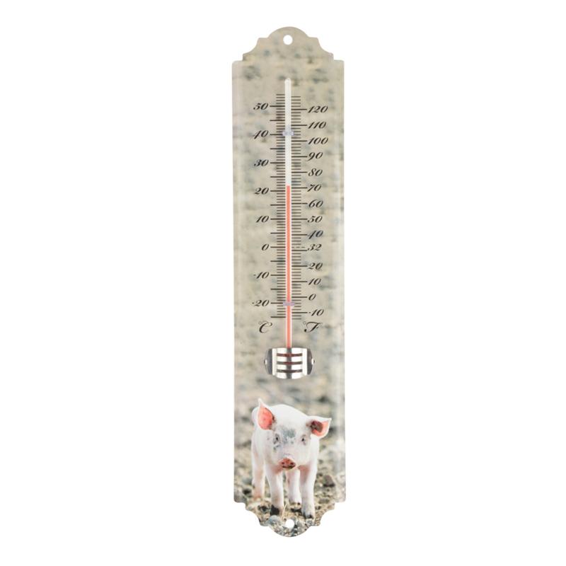 thermometer biggetje