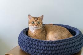Sunny Basket - Donkerblauw (laatste item)