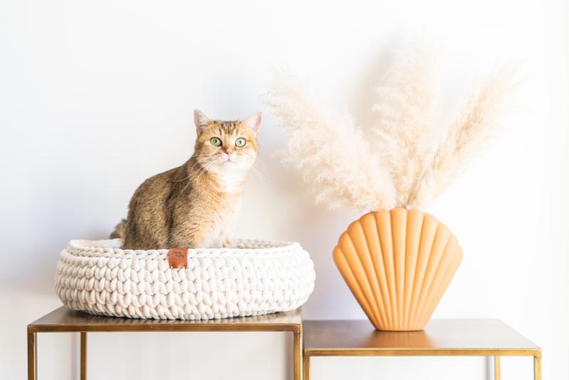 Sunny Basket - Creme