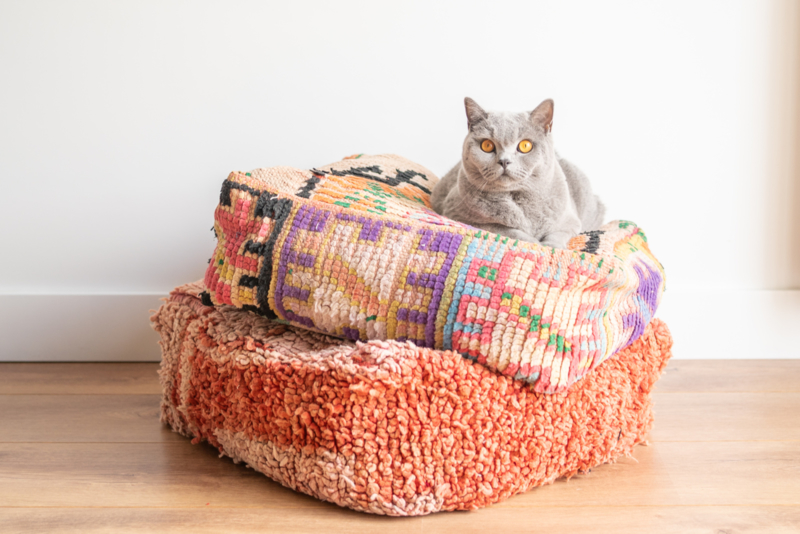 Sunny Pillow 1
