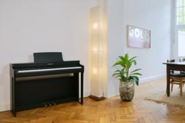 Kawai CN29 digitale piano