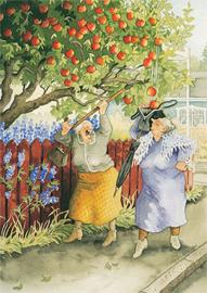 011 Appels plukken