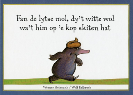 Fan de lytse mol, dy't witte wol wa't him op 'e kop skiten hat (minyboekje)