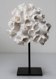 Ornament van polyresin