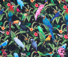 Jersey Vogels
