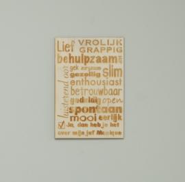 Houten poster meester / juf