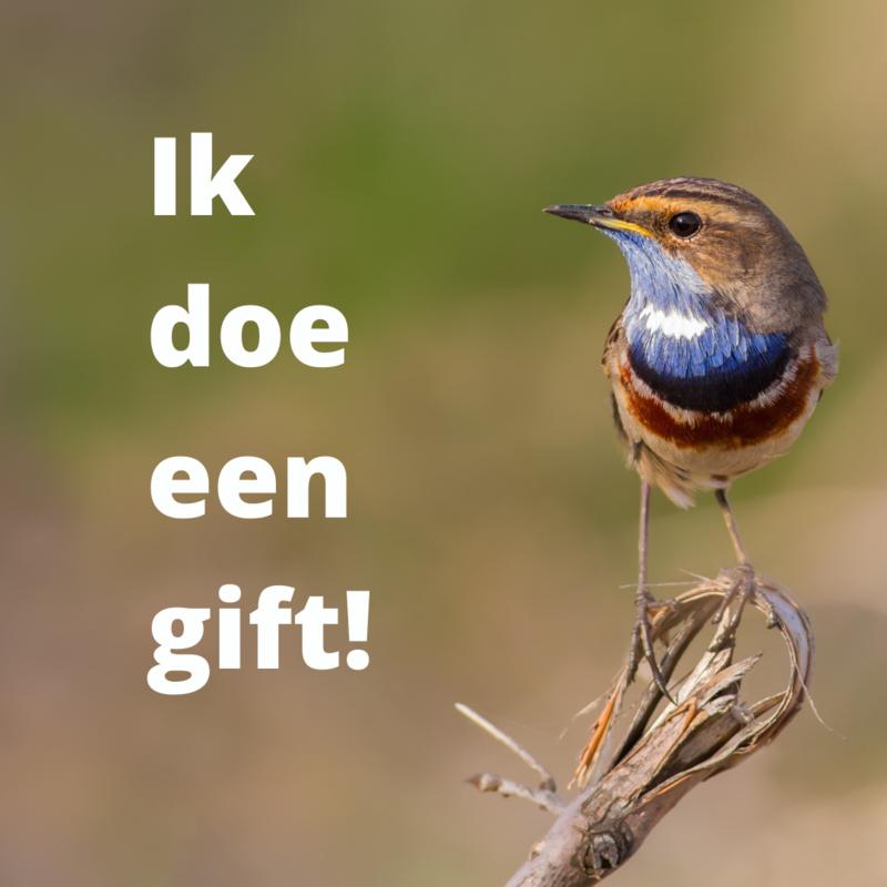 Ik wil graag een gift doen