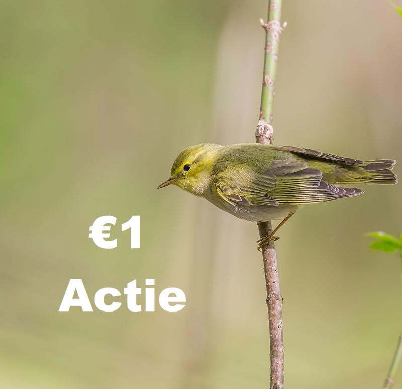Actielidmaatschap €1