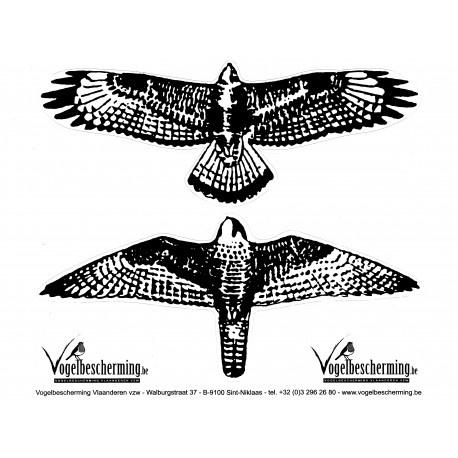 Raamstickers - Roofvogelsilhouetten