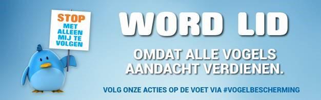 Lidmaatschap Vogelbescherming Vlaanderen