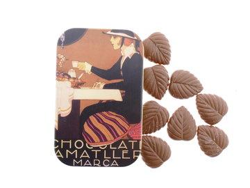 Amatller - Melk Chocolade Bloemblaadjes 30gr