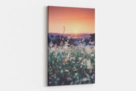 Schilderij zonsondergang