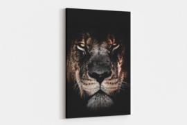 Leeuw op canvas