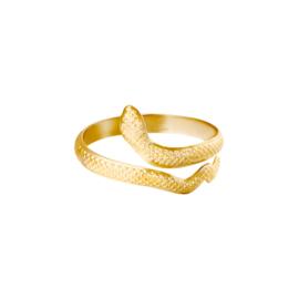 Ring Snake goud