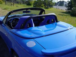 Speedster tonneau cover