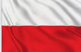 1:72 Polish