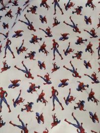 License katoen Spiderman
