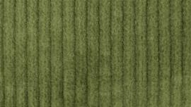 Corduroy stretch licht groen