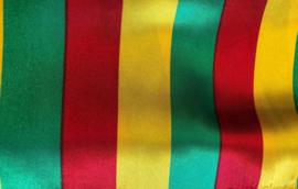 Carnavals kleuren steep