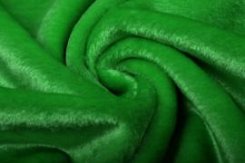 Bond gras groen