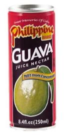 Philippine Brand Guavenectar Drank 250ml