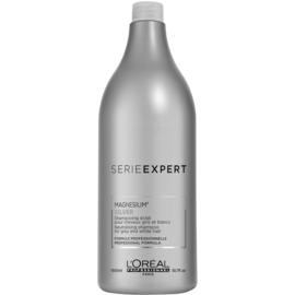 L'Orèal SE Silver Shampoo 1500ml