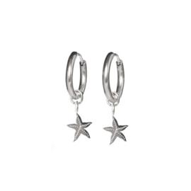 Earrings starfish steel