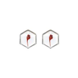 Oorbellen paar hangers | DROOGBLOEM zeshoek zilver