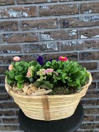 Plantenarrangement -vrolijk ovaal-