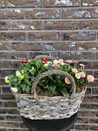 Plantenarrangement -fleurig ovaal-