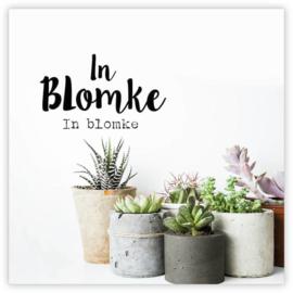 In Blomke  -GiveX-