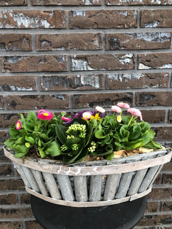 Plantenarrangement -fleurig ovaal medium-