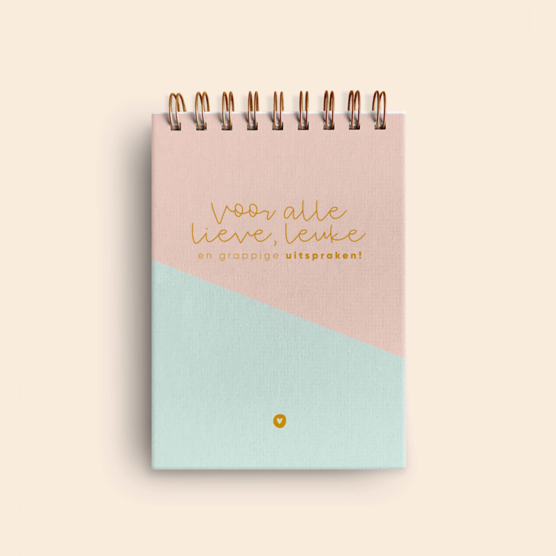 Uitsprakenboekje • Roze/mint & goud