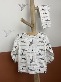 Kidooz- T-shirt longsleeve Sharke