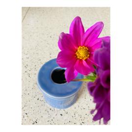 bloemenvaasje - korenbloem