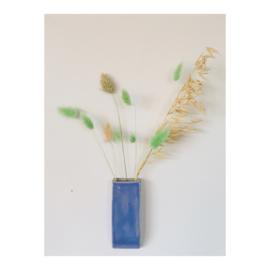 muurvaasje - korenbloem