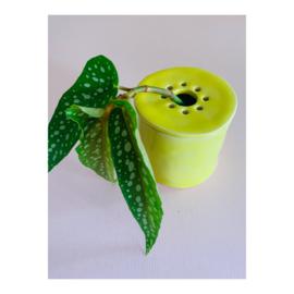 bloemenvaasje - geel