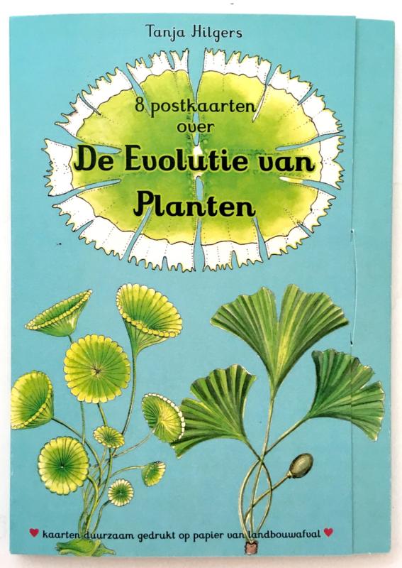 8 Evolutie Kaarten