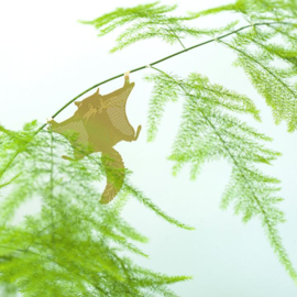 Plant Animal flying squirrel - Another Studio