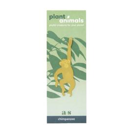 Plant Animal Chimpanzee - Another Studio