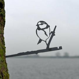 Metalen Pimpelmees - Birdwise
