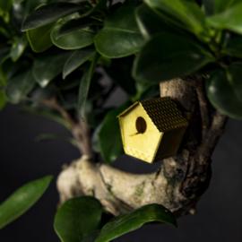 Tiny Birdhouse - Botanopia