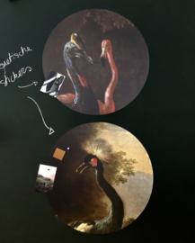 Muursticker 'Cassowary and friend' - Groovy Magnets