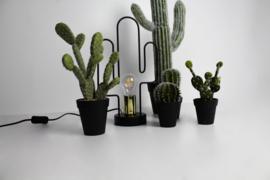 Cactuslamp zwart metaal-Housevitamin